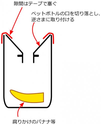 hae-trap_160629
