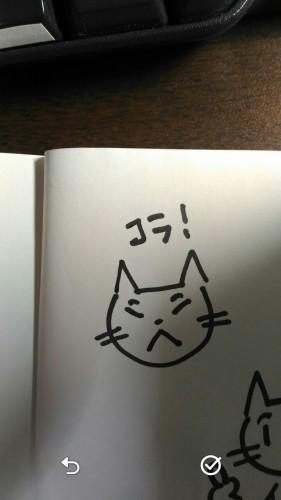 01_satsuei_kage
