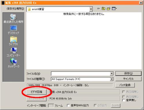 10_x264_shuturyoku